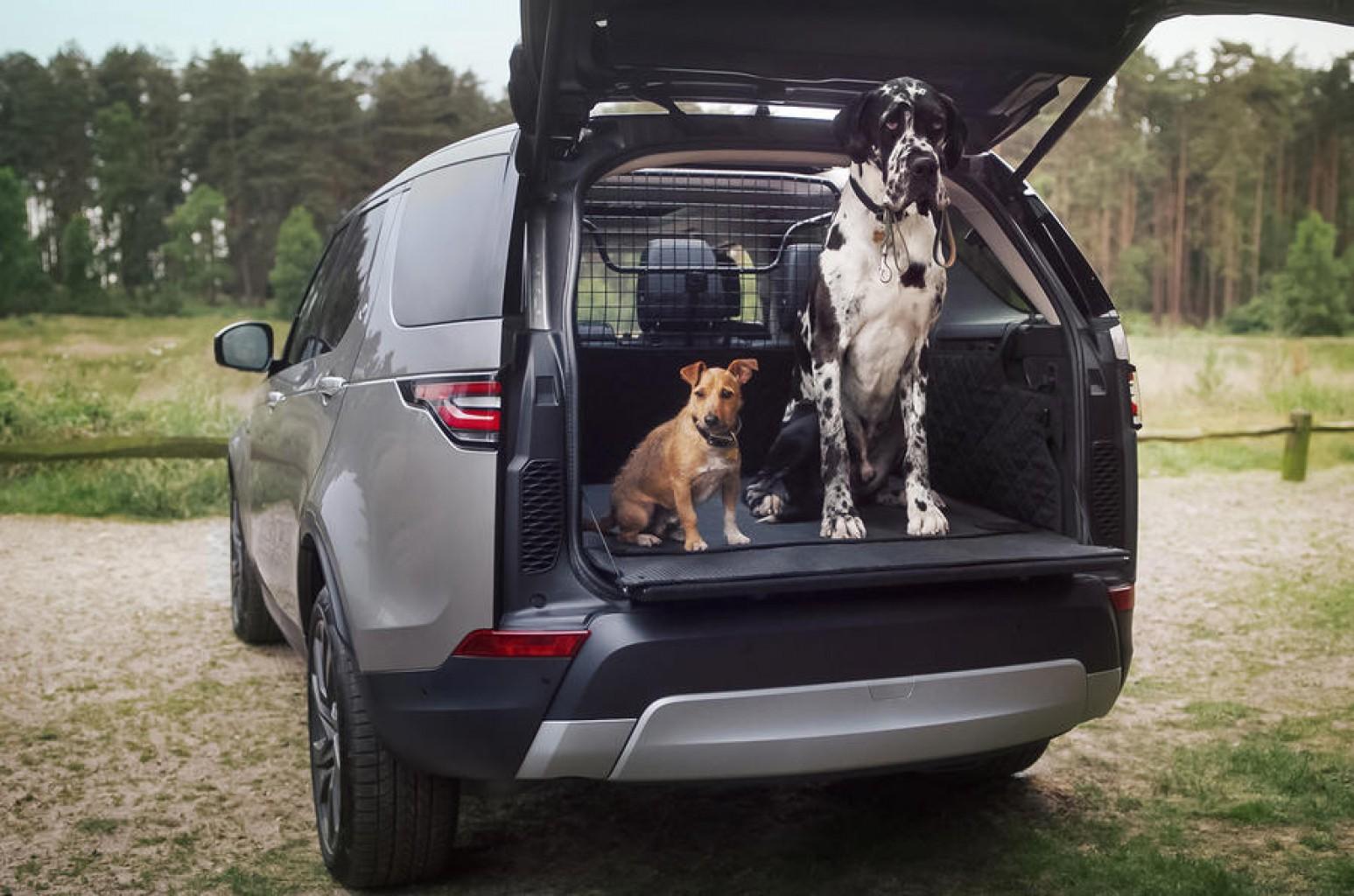 Land Rover quiere que los animales viajen más cómodos en sus vehículos