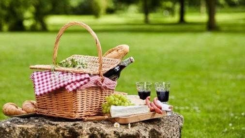 Consejos para  evitar intoxicaciones  a la hora de los picnics