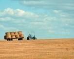 Subvenciones y préstamos agrícolas disponibles