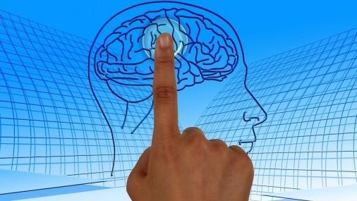 Por qué y cómo funciona el entrenamiento rápido del Cerebro