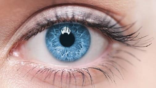 ¿Tienen mis hijos buena salud ocular?