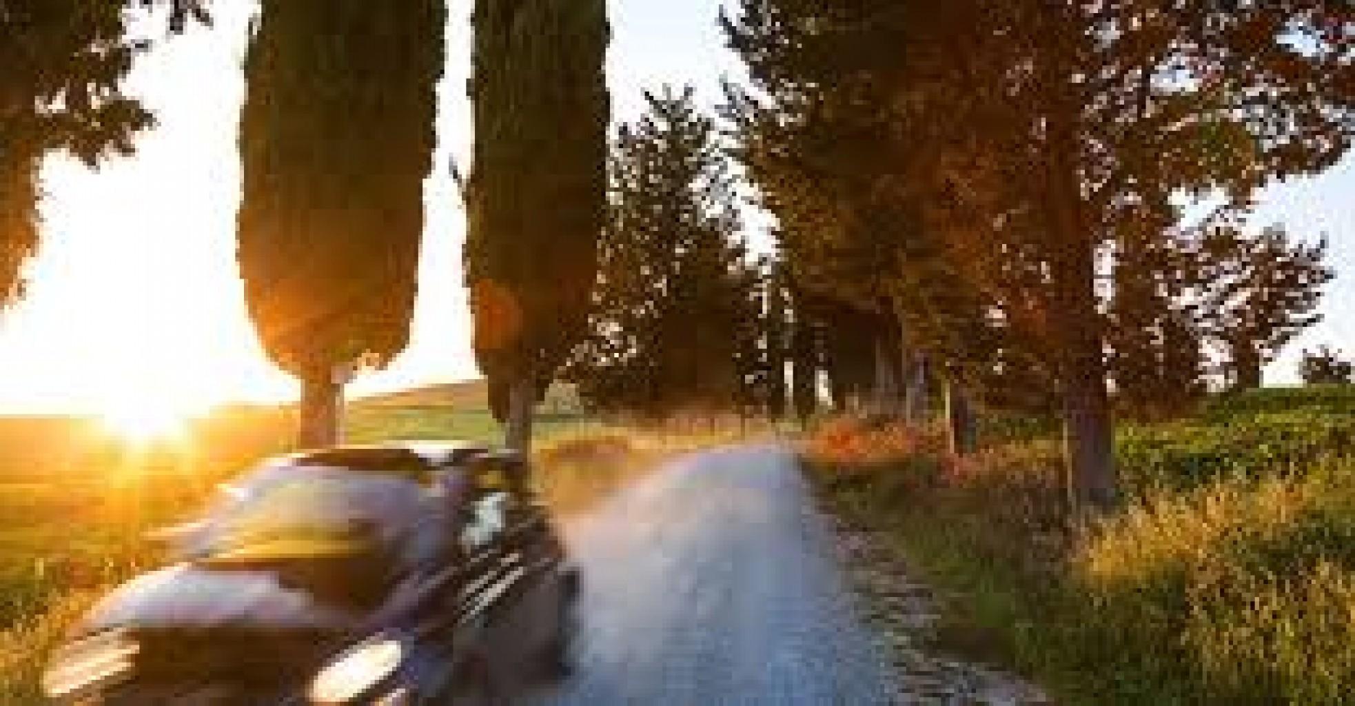 Cuales son los automóviles que los  propietarios mantienen por más tiempo