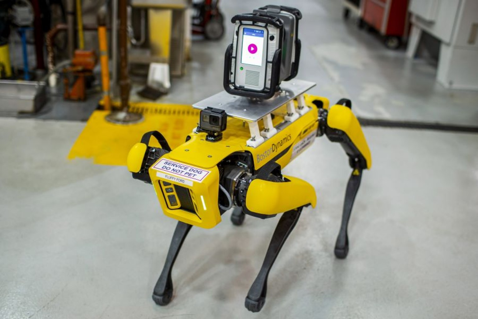 """Tiene cuatro patas, pueden sentarse, darse la vuelta y darte la mano """"Conozca a Fluffy, el Perro Robot de  Ford """""""